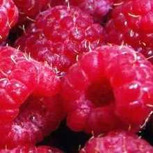 Вкусные заготовки из малины