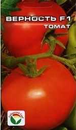 Фото сорта томата верность