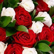 Выращивание розы из подаренного букета