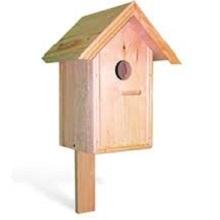 Домики для птиц в саду