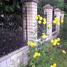Садовые заборы и ограждения