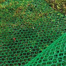 Сетка пластиковая для газона