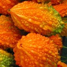 Момордика зрелый плод