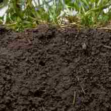Как провести анализ почвы