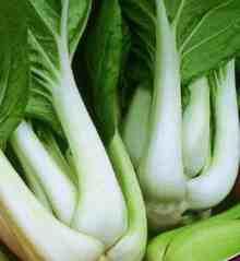 Выращивание капусты Пак-чой, ЧАСТНЫЙ ДОМ