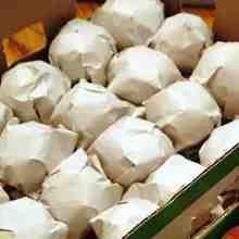 Обернутые бумагой яблоки для лучшей сохраняемости