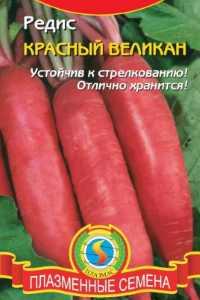 Редис сорт красный великан